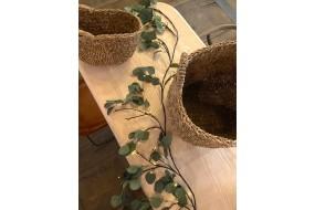 FIORIRA UN GIARDINO Guirlande Eucalyptus